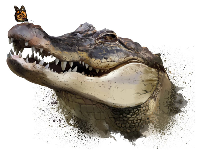 an agressive-looking crocodile